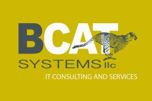 BCAT Systems Business Card