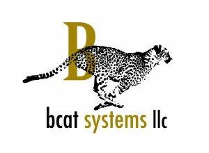 BCAT Systems Logo